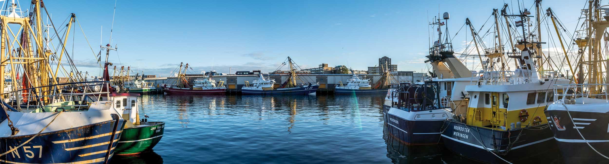 Panorama van haven met boten.
